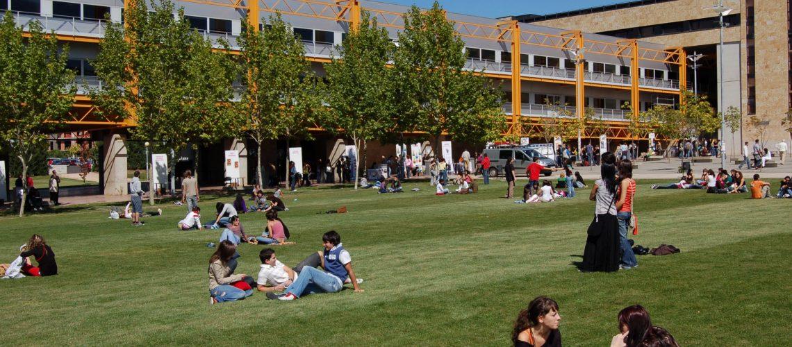 Universitario_Plaza_Bolonia